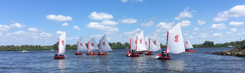 Optimist zeilen in Drimmelen